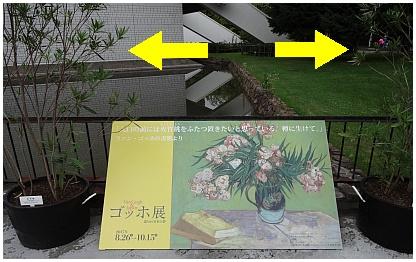 ゴッホ展02.jpg