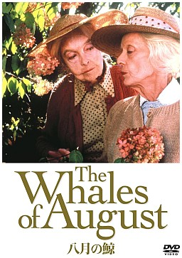 八月の鯨.jpg