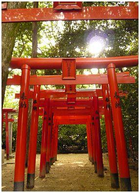 博多住吉神社2.jpg
