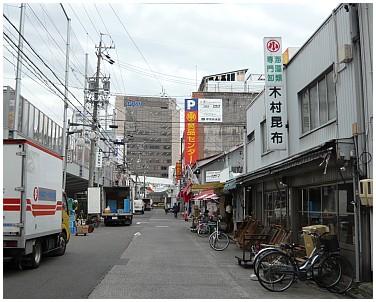 名古屋柳2.jpg