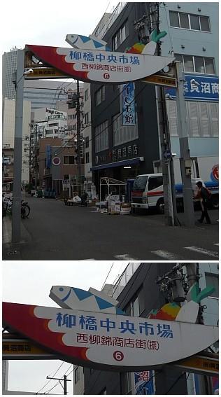 名古屋柳56.jpg