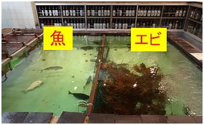 大漁や01.jpg