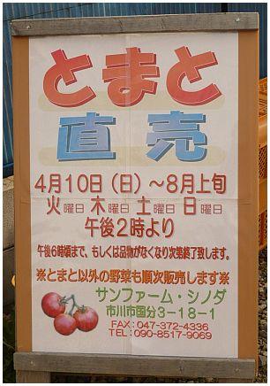 篠田さん4.jpg