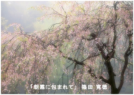 篠田寛徳さん.jpg