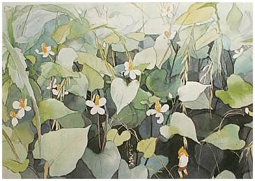 野の花3.jpg