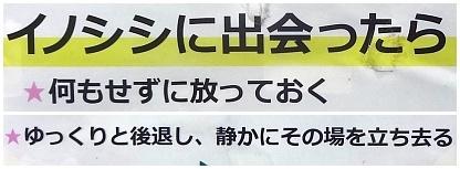 hokuso02.jpg