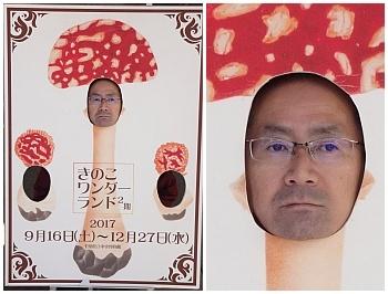 kinoko03.jpg