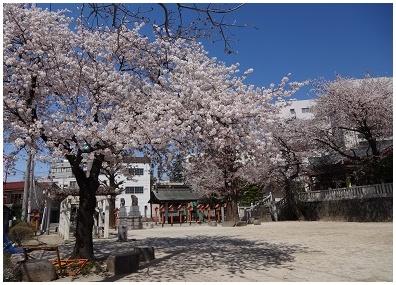 maebashi00.jpg