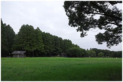 mizuomoto01.jpg
